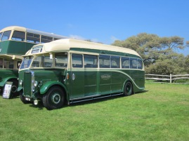 Lots of double deckers and just a few single deckers like this one.