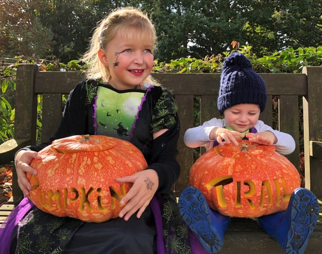pumpkin-28.jpg